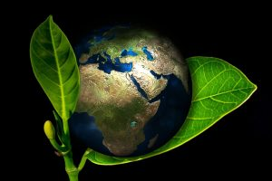 earth-405096_960_720